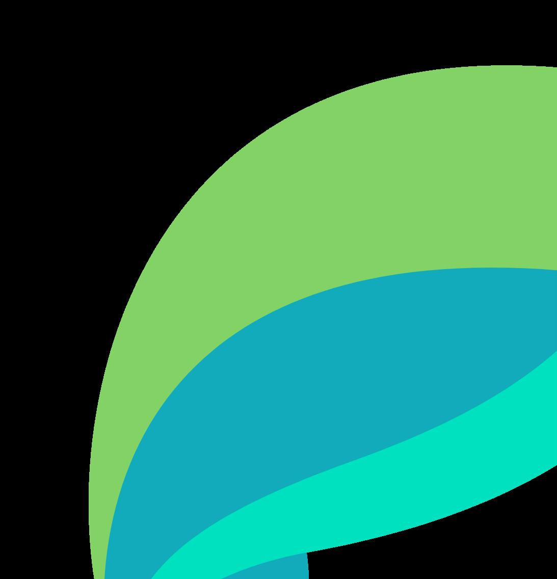 ParetoHealth logo close-up image.